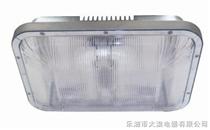 《NFC9175》,<NFC9175> 长寿无极高亮度顶灯NFC9175