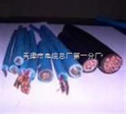 DJYPV计算机用屏蔽电缆-4×2×0.5㎜²