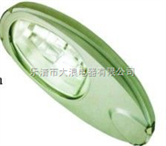 NLC9300节能长寿路灯-城市路灯灯具-长寿节能道路灯