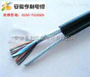 ZR-DJFPGP-(克拉瑪依計算機電纜)(ZR-DJFPGP電纜)