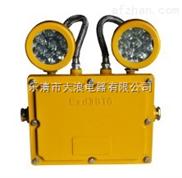BAJ52-防爆应急照明灯