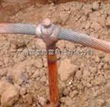 广州雷泰铜包钢接地绞线