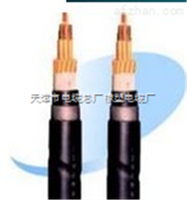 防水防鼠电力电缆,FS-YJV42粗钢丝铠装电缆价格