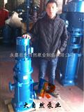 供应40DL*2多级泵