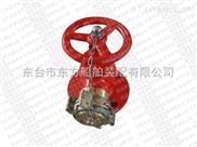 消防栓  消火栓
