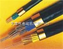 阻燃计算机屏蔽电缆 ZR-DJYVP