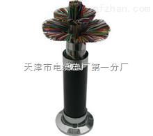 阻燃通信电缆 ZRC-HYA22