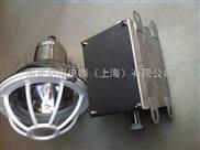 专业厂家不锈钢防爆灯证书查询BFD55不锈钢防爆防腐投光灯价格