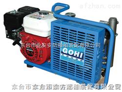 供应呼吸器充气泵厂家|充气泵规格要求