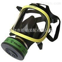 防毒防尘全面罩