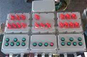 粉塵防爆照明配電箱BXM-DIP,A20粉塵防爆照明配電箱