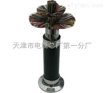 市内ZR-HYA阻燃通信电缆价格查询