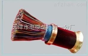 敷设电缆ZR-HYA53-20×2×0.8