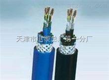 计算机电缆:DJFFP22 ,DJFFP32 ,DJFFRP