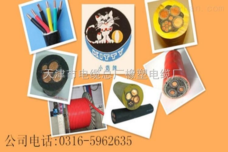 30*2*0.5充油通讯电缆每米价格
