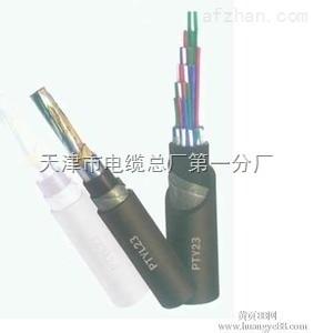 信号电缆-PTYA23型-9芯