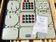 BXMD53-12K-304防爆箱