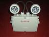 LED光源应急灯煤矿应急灯 煤矿用指示灯 电力防爆应急灯