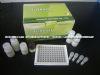 人纤维连接蛋白(FN)ELISA试剂盒