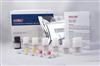 大dou凝集素(SBA)ELISA试剂盒