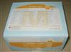 ren肿瘤坏死yin子β(TNFβ)elisajian测试剂盒