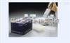 96T/48T上海E.coli P大肠杆菌宿主残留蛋白ELISA试剂盒