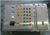 BXD防爆型不锈钢配电箱